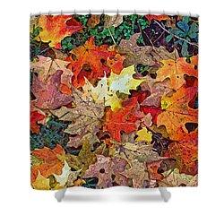Autumn Carpet Shower Curtain