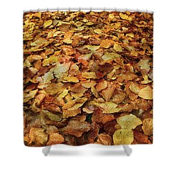 Autumn Carpet Shower Curtain