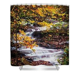 Autumn Cascade  Shower Curtain