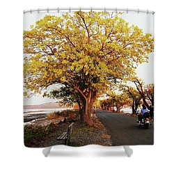 Autumn Causeway Shower Curtain