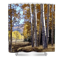 Autumn Chama New Mexico Shower Curtain by Kurt Van Wagner