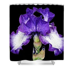 Autumn Circus Iris Shower Curtain