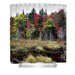 Shower Curtain featuring the photograph Autumn Color In The Adirondacks by David Patterson