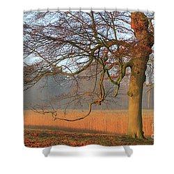 Autumn Colored Landscape Shower Curtain