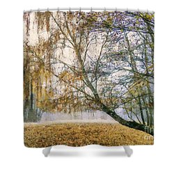 Autumn Colorful Birch Trees Paint Shower Curtain