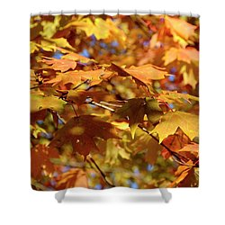 Shower Curtain featuring the photograph Autumn Colors 3  by Angie Tirado