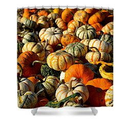 Autumn Colors Shower Curtain by Barbara Bardzik