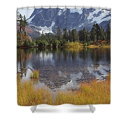 Autumn Colors Shower Curtain by Elvira Butler
