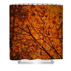 Autumn Colours Shower Curtain