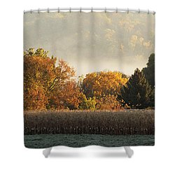 Autumn Cornfield Shower Curtain