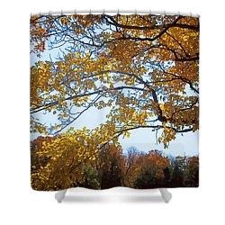 Autumn Cover Shower Curtain by Jo-Anne Gazo-McKim