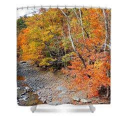Autumn Creek 2 Shower Curtain