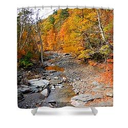 Autumn Creek 5 Shower Curtain