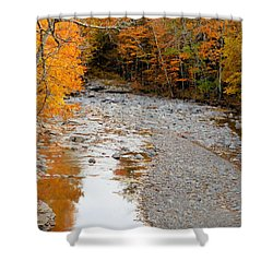Autumn Creek 9 Shower Curtain