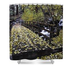 Autumn Crossing Shower Curtain