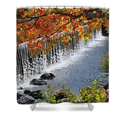 Autumn Dam Shower Curtain