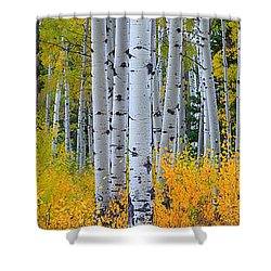 Shower Curtain featuring the photograph Autumn Dance by Kadek Susanto