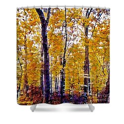 Autumn  Day In The Woods Shower Curtain by MaryLee Parker