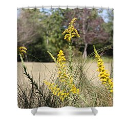 Shower Curtain featuring the photograph Autumn  by Debra Forand