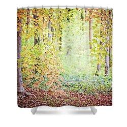 Autumn Dreams Shower Curtain by Melanie Alexandra Price