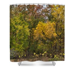 Shower Curtain featuring the photograph Autumn Explosion by Joan Bertucci