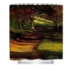 Autumn Feel Shower Curtain