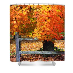 Autumn Fence Shower Curtain