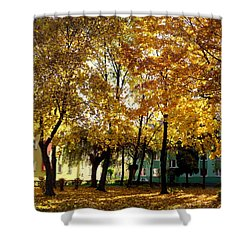 Autumn Festival Of Colors Shower Curtain