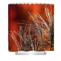 Autumn Fire - 1 Shower Curtain