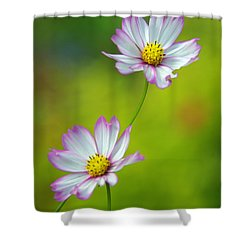 Shower Curtain featuring the photograph Autumn Flowers by Byron Varvarigos