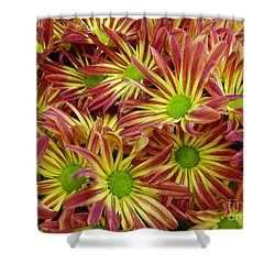 Shower Curtain featuring the photograph Autumn Flowers by Lyric Lucas