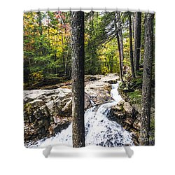Shower Curtain featuring the photograph Autumn Flows by Anthony Baatz