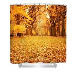 Autumn Foliage - Central Park - New York City Shower Curtain by Vivienne Gucwa
