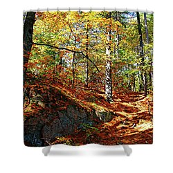 Autumn Forest Killarney Shower Curtain