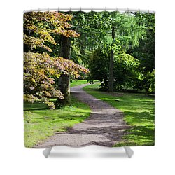 Autumn Forest Path Shower Curtain by Scott Lyons