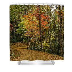 Autumn Forest Road. Shower Curtain