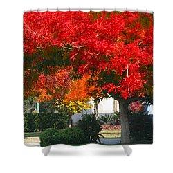 Autumn Fresno Shower Curtain
