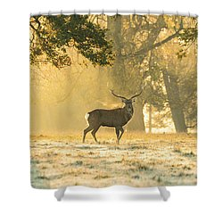 Shower Curtain featuring the photograph Autumn Frost by Scott Carruthers