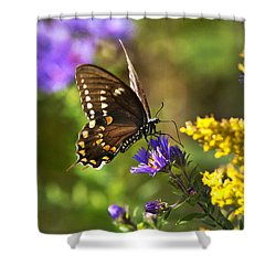 Autumn Garden Butterfly Shower Curtain by Christina Rollo