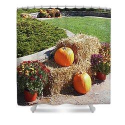 Shower Curtain featuring the photograph Autumn Gifts Harvest Time  by Irina Sztukowski