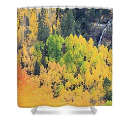 Autumn Glory Shower Curtain by David Chandler
