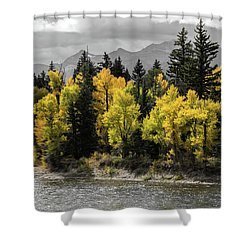 Shower Curtain featuring the photograph Autumn Glow by Colleen Coccia