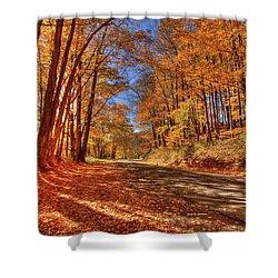 Autumn Glow Shower Curtain by Dale R Carlson