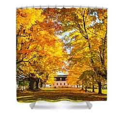 Shower Curtain featuring the photograph Autumn Gold IIi by Robert Clifford