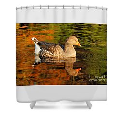 Autumn Goose Reflection Shower Curtain