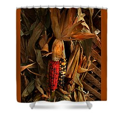 Autumn Harvest Shower Curtain