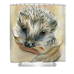 Shower Curtain featuring the pastel Autumn Hedgehog by MM Anderson