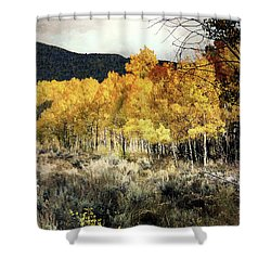 Autumn Hike Shower Curtain