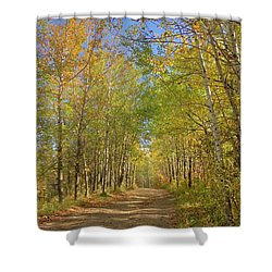 Autumn Hike Shower Curtain by Jim Sauchyn