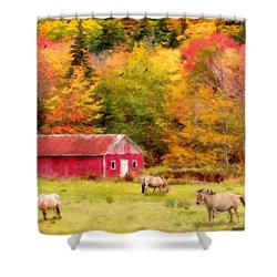 Autumn Horses Shower Curtain by Ken Morris